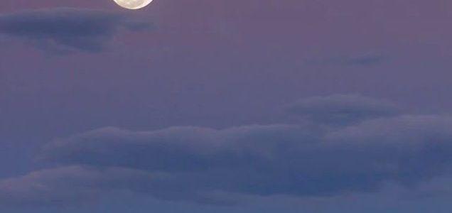 Downloading Light - Super Moon photo by Loren Mariani